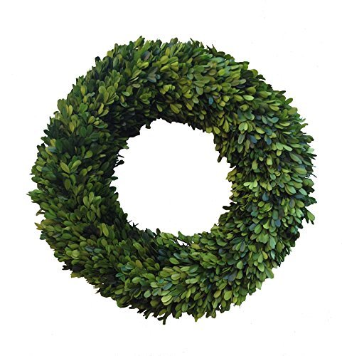 Mills Floral Boxwood Country Manor Round Wreath, 20-Inch by Mills Floral Company