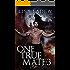 One True Mate 3: Shifter's Echo