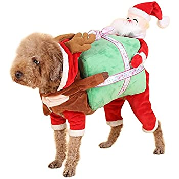 NACOCO Dog Costume Carrying Gift Box with Santa Claus Pet Cat Costumes  Funny Christmas Party Festival Holiday Outfit (S) - Amazon.com : Funny Dog Clothes For Small Dogs, Carrying Pumpkin