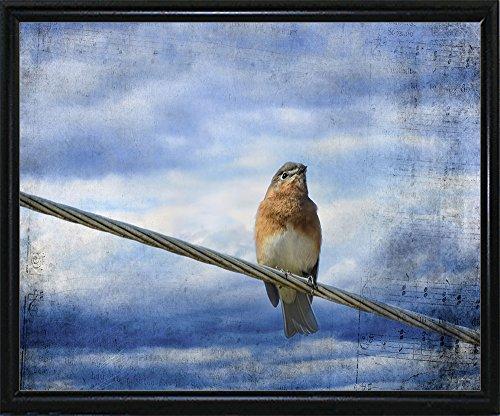 Heavenly Song Of The Bluebird Framed Print 10.67