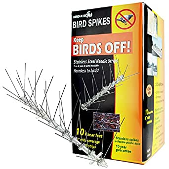 Bird-X STS-10-R Regular Width 6-inch Stainless Steel Bird Spikes, Metal Roof Guard Pigeon Prevention, Rodent Deterrent, Animal and Pest Control Supplies, 10 feet