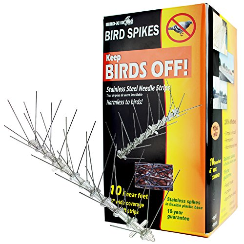 Pigeon Spikes - Bird-X Stainless Steel Bird Spikes Kit, Covers 10 feet