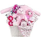 Baby Girl Gift Basket by Pellatt Cornucopia with Baby Essentials