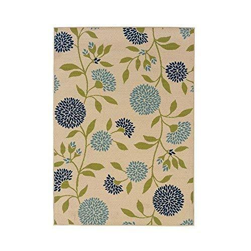 (Plow & Hearth 38880-IV Floral Surry Indoor Outdoor Rug, 21