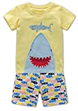 Fiream Baby Boys Shortsleeve Summer Clothing T-Shirts Cotton Sets and Shorts 2 Pieces Sets(18008,2T/2-3YRS)