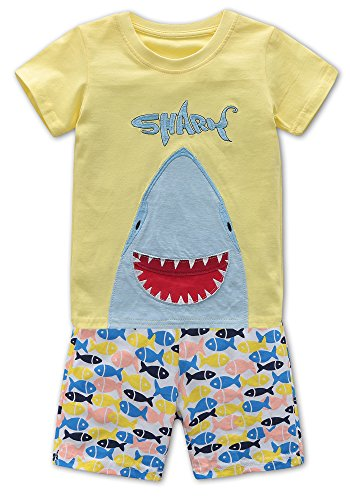 Fiream Baby Boys Shortsleeve Summer Clothing T-Shirts Cotton Sets and Shorts 2 Pieces Sets(18008,2T/2-3YRS) by Fiream