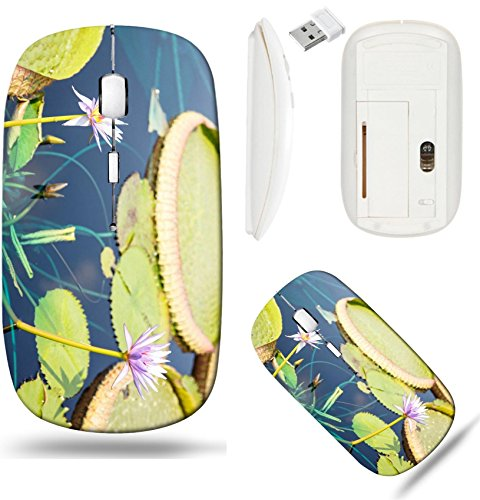 Liili Wireless Mouse White Base Travel 2.4G Wireless Mice with USB Receiver, Click with 1000 DPI for notebook, pc, laptop, computer, mac book Large green lilly pads in a dark blue pond with exotic flo -