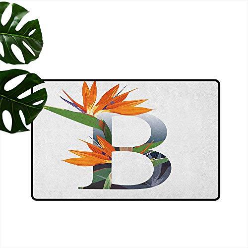 (RenteriaDecor Letter B,Door mat Letter B with Bird of Paradise Flower Alphabet Character Font Design Print 36