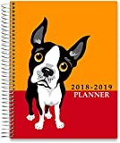 Tools4Wisdom Planners 2019 Calendar Planner - Dated November 2018 to December 2019 Calendar Year - 8.5 x 11 Hardcover - Large Weekly/Monthly Goals Pages - 15 Month Tabs - 200 Planner Stickers