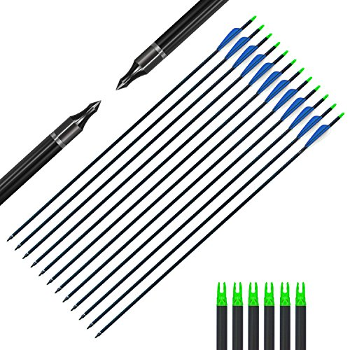 Bcslinek Archery 30Inch Fiberglass Target Arrow Practice Hunting Arrows With Removable Tips for Compound & Recurve Bow(Pack of 12)