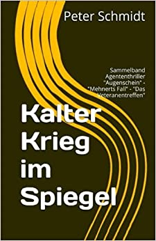 Book Kalter Krieg im Spiegel