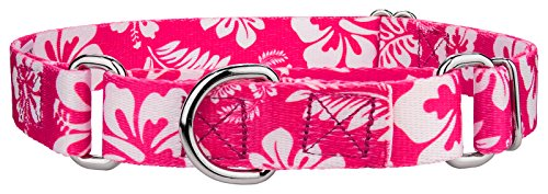 Image of Country Brook Petz Pink Hawaiian Martingale Dog Collar - Medium