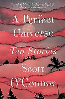 A Perfect Universe