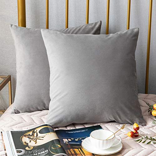 DEZENE 18 x 18 Pillow Covers,2 Pack, Solid Soft Velvet Decorative Throw Pillow Cases,Euro Accent Pillowcases,Square Cushion Covers for Farmhouse,Couch,Sofa,Kids,Indoor & Outdoor,Light Grey