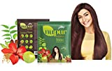 Godrej Nupur Henna Natural Mehndi for Hair Color