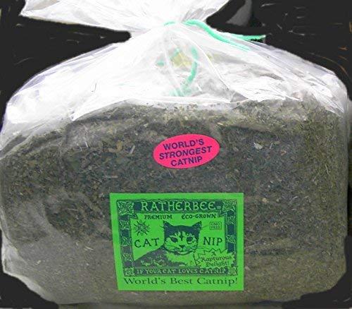 Ratherbee Premium Eco-Grown Catnip Loose Bulk 1 Pound Bag