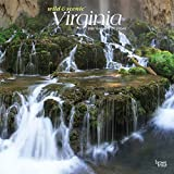 Virginia Wild & Scenic 2020 12 x 12 Inch Monthly Square Wall Calendar, USA United States of America Southeast State Nature