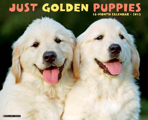 Just Golden Puppies 2015 Wall Calendar