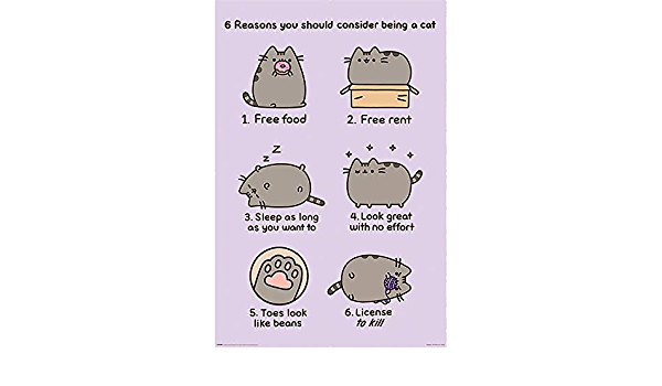 Pusheen Poster ReasonsOFFICIAL