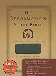 The Reformation Study Bible - Imitation Leather-Gray