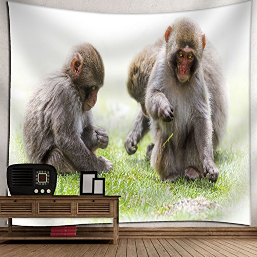 KRWHTS Wall Hanging Tapestry - Jigokudani Monkey - Photography Home Decor Living Room150130cm(60