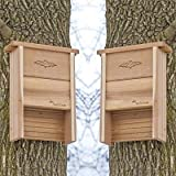 Cedar Bat Shelters, Pack of 2