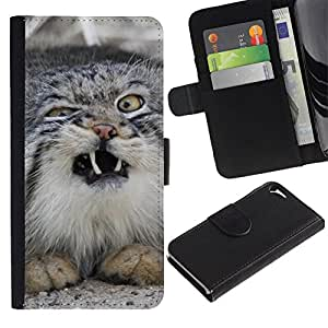 All Phone Most Case / Oferta Especial Cáscara Funda de cuero Monedero Cubierta de proteccion Caso / Wallet Case for Apple Iphone 5 / 5S // Norwegian Forest Cat Wild Sneeze