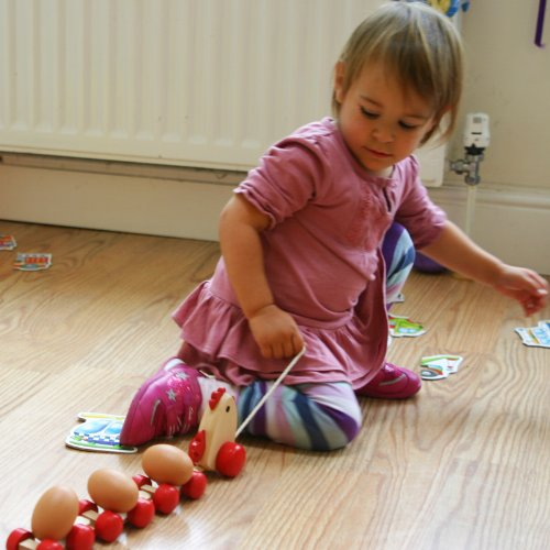 TOWO Wooden Pull Along Toy Chicken with 3 Eggs Pull Along Wooden Toy for Toddlers Wooden Toys for Baby