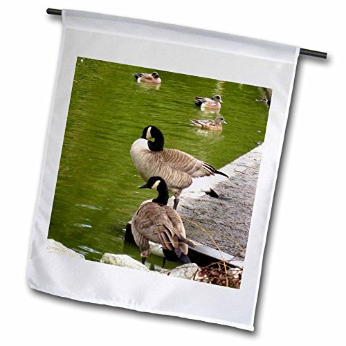 nada Geese and Ducks on The River Garden Flag, 12 by 18-Inch ()