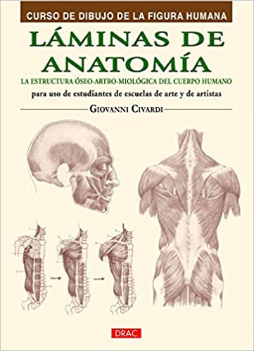 Curso De Dibujo De La Figura Humana. Láminas De Anatomía Curso ...