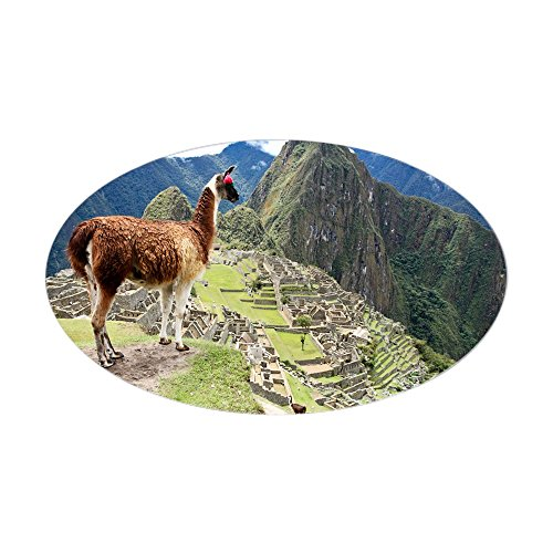 CafePress Ancient Inca Lost City Machu Picchu Oval Bumper Sticker, Euro Oval Car Decal