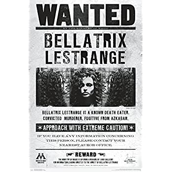 picture about Harry Potter Wanted Posters Printable called : Harry Potter - Video clip Poster (Sought after: Bad