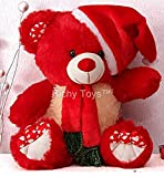 Richy Toys Santa Teddy Bear Plush Stuffed Soft toys Animals Birthday Gift For Kids 38CM (Red)