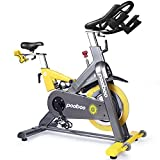 L NOW Indoor Cycling Bike Exercise Bike Magnetic Resistance Stationary Bike Commercial Standard