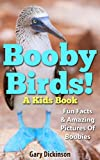 Birds: Children's Book With Amazing Pictures And Fun Facts About Booby Birds