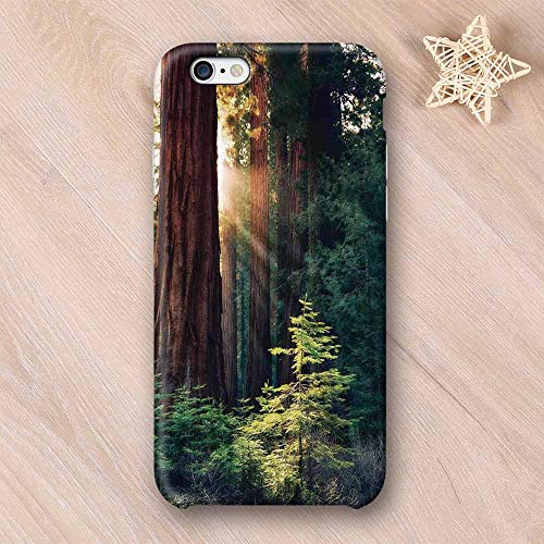 National Parks Home Decor Elegant Compatible with iPhone Case,Morning Sunlight in Wilderness Yosemite Sierra Nevada Nature Art Compatible with iPhone 6/6s,iPhone 6/6s