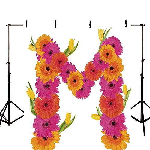 (Letter M Stylish Backdrop,Pink and Orange Gerbera Flowers and Tulips in Full Blossom Fresh Spring for Photography,98.4