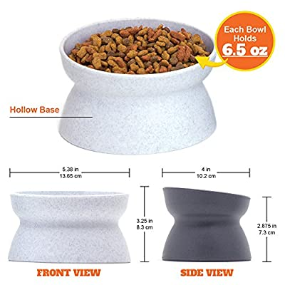 Kitty City Raised Cat Food Bowl Collection, Stress Free Pet Feeder and Waterer