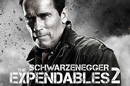 Arnold Schwarzenegger modern Classical Fitness gym bodybuilding posters hunk muscle man