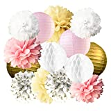 14 Pcs Pink White Gold Party Decorations Tissue Paper Pom Poms Flowers for Baby Boy Girl Shower Room Wedding Birthday Decoration
