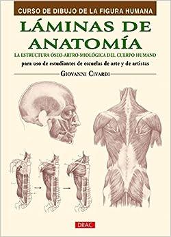 Curso De Dibujo De La Figura Humana. Láminas De Anatomía