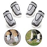 #6: LuckIn Breathable Mesh Dog Shoes Medium and Large Dog Boots Paw Protector with Anti-Slip Sole for Hot Pavement, 4 Pcs