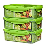 Green Bento Box – 39oz - 3 Food Containers for