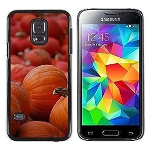 FECELL CITY // Duro Aluminio Pegatina PC Caso decorativo Funda Carcasa de Protección para Samsung Galaxy S5 Mini, SM-G800, NOT S5 REGULAR! // Halloween Orange Autumn Holiday