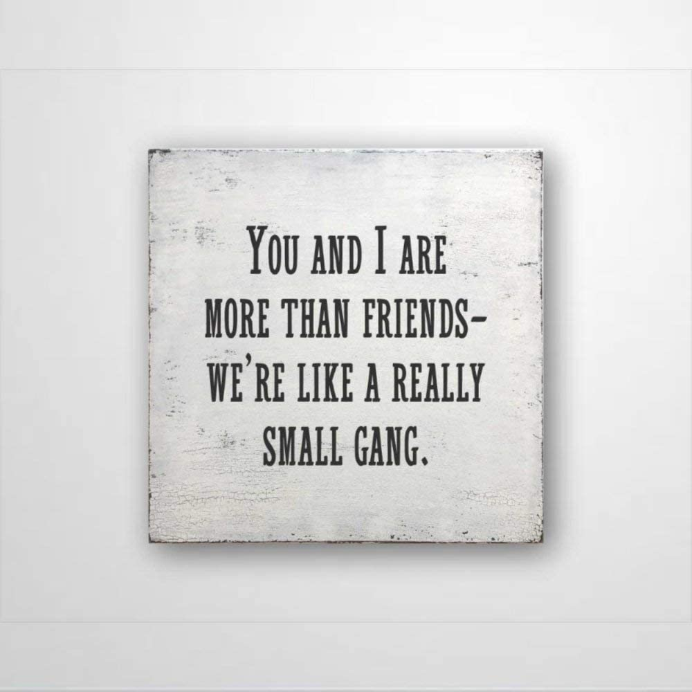 DONL9BAUER Funny Sign Present,Funny Friend Sign,Funny Office Decor,Wood Sign Rustic You and I are More Than Friends We're Like a Really Small Gang Sign Wall Hanging Indoor Outdoor