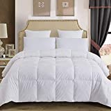 Best Down Comforters - Decroom 100% Cotton Quilted Down Comforter with White Review
