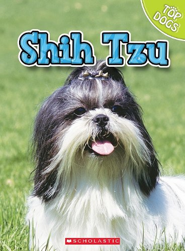 Shih-Tzu-Top-Dogs