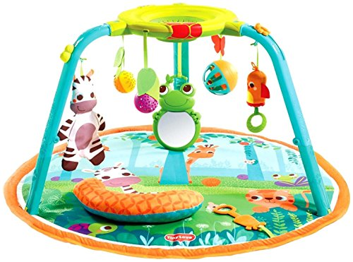 Tiny Love Gymini 1 2 3 Here I Grow Playmat Review