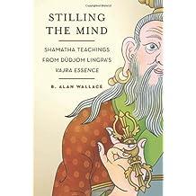 Stilling the Mind: Shamatha Teachings from Dudjom Lingpa's Vajra Essence ,by Wallace, B. Alan ( 2011 ) Paperback