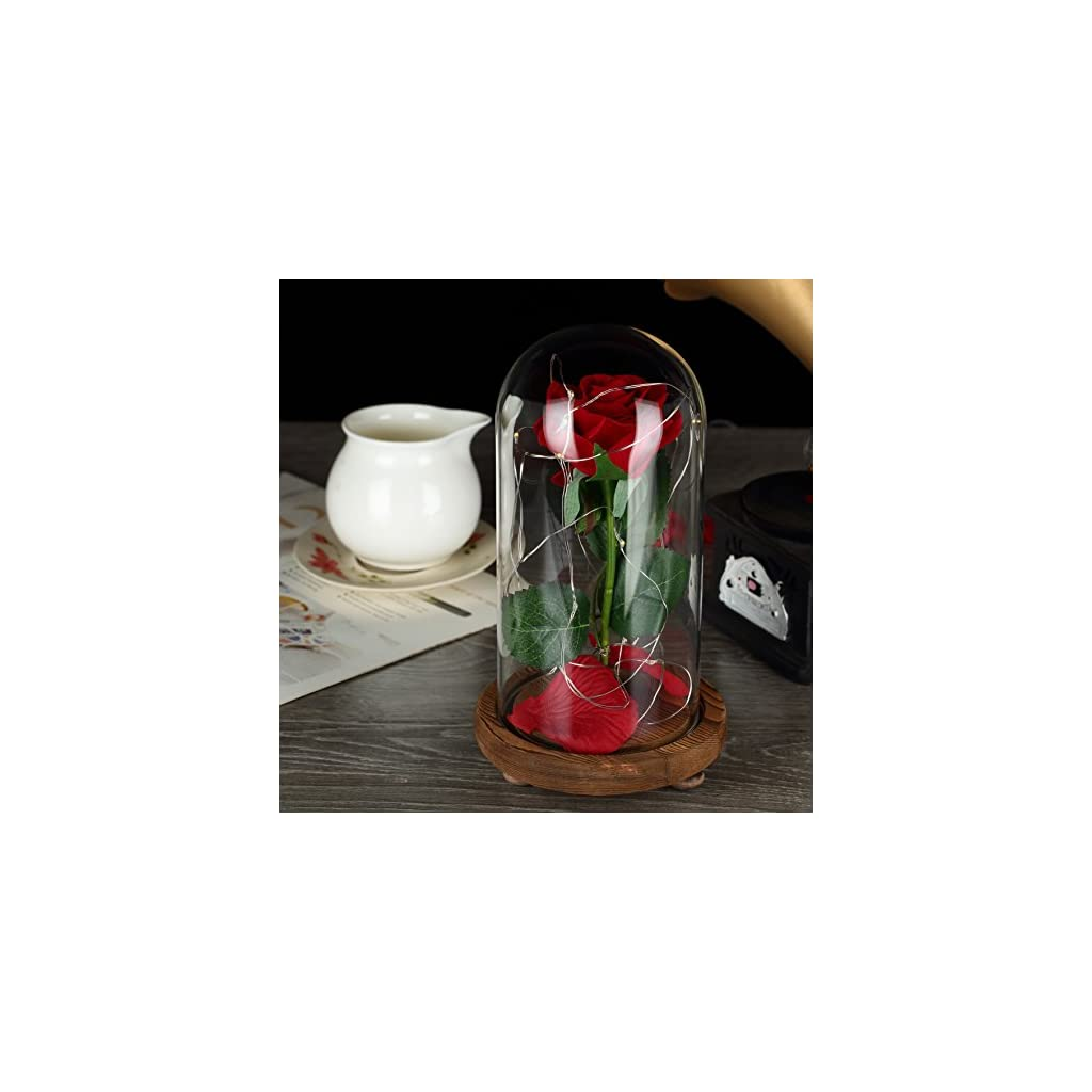 YSBER Beauty & The Beast Red Silk Rose and LED Light with Fallen Petals in Glass Dome on a Wooden Base for Lover, Mother, Girlfriend